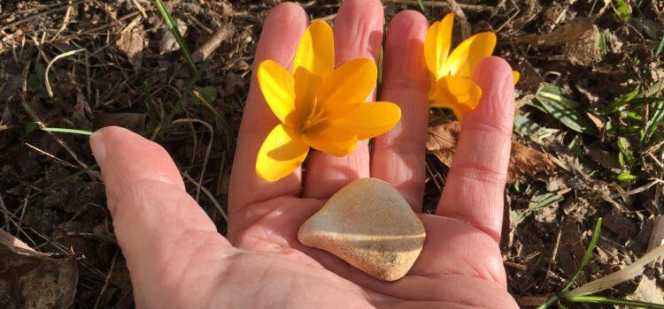Der kleine Stein. Eine Freundschafts-Geschichte zum Mitmachen, Nachspielen und Weiterspinnen im Freien